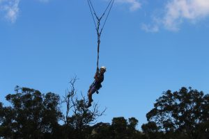 Student on flying fox