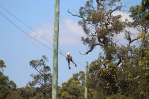 Student on high ropes